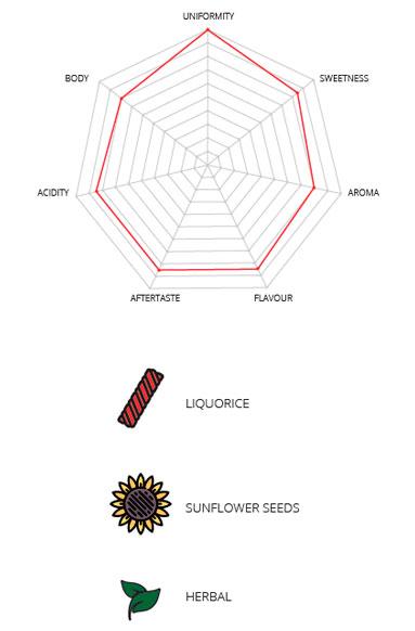 Infographic Coffee Natur Bio