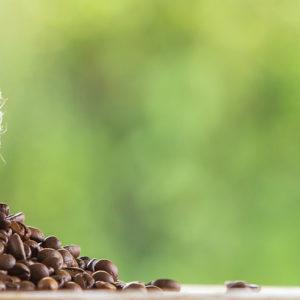 Café responsable sostenible